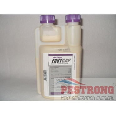 Onslaught FastCap Spider & Scorpion Insecticide-Pt (16oz)