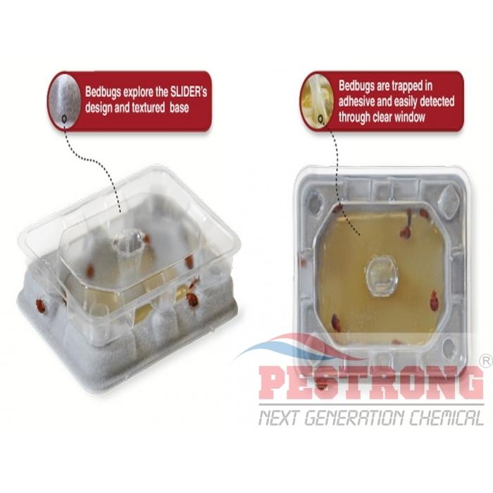 Bds Slider Bed Bug Monitor